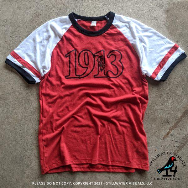 Delta sigma theta vintage jersey shirt